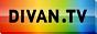 Логотип онлайн ТВ Divan.TV - Боец+