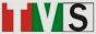 Логотип онлайн ТВ ТВ Скалица