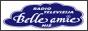 Логотип онлайн ТВ RTV Belle Amie