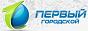 Логотип онлайн ТВ Первый Городской