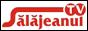 Логотип онлайн ТВ Салажянул ТВ