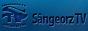Логотип онлайн ТВ Сынджорз ТВ